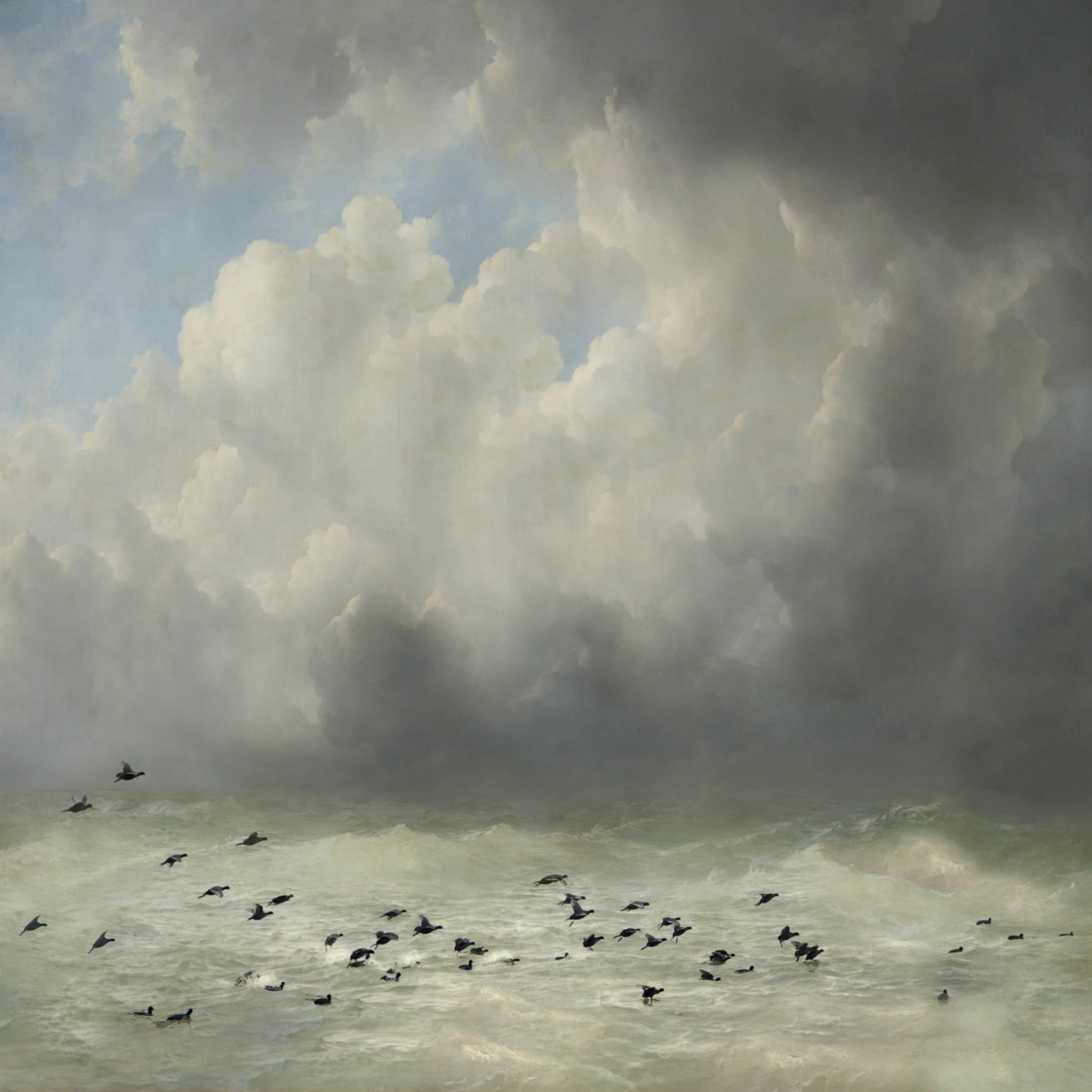 Saskia Boelsums Landscape 42 Courtesy Eduard Planting Gallery
