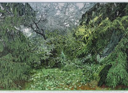 Siemen Dijkstra Arboretum n 2 Copie
